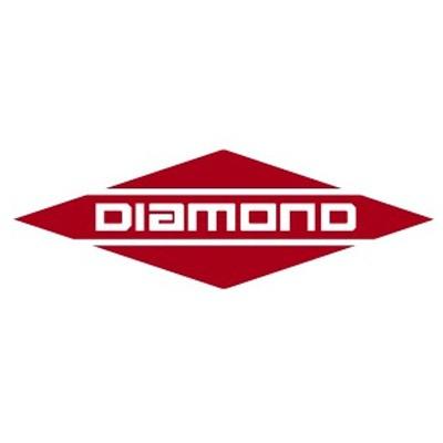 Logo For: Diamond Coach VIP 2200